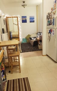 Private Apt Conveniently in South Slope, BK - Brooklyn - Apartment