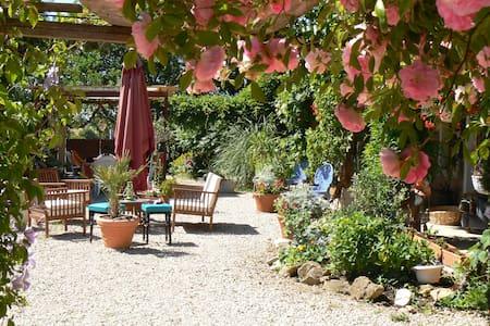 Maison Cheval Blanc - Montpont-en-Bresse - Apartment