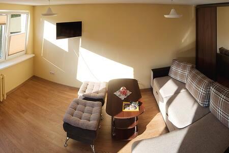 Calm and cozy getaway - Druskininkai - Apartment