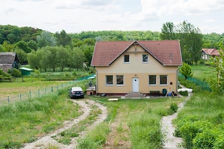 Gomba Szőke Ferenc utca 41. - Casa