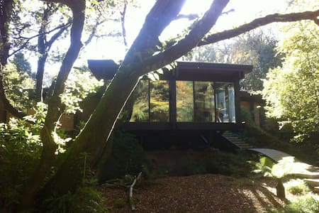 A unique and secluded B&B just four miles from the Eden Project. Enjoy your own private garden and living room in this award winning eco home. Koeschi is hidden away in peaceful woodland but has easy access to the coast.