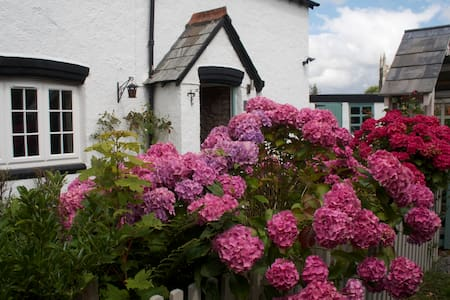 Quiet country cottage - Dartmoor hc - Brentor - House