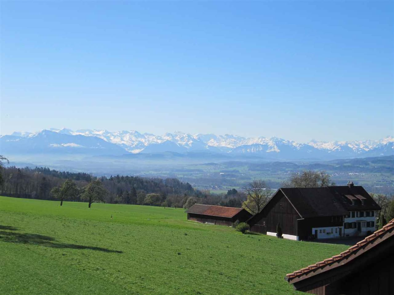 The Swiss Alps - our view from Oberwil-Lieli.