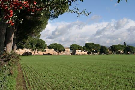 Tenuta Pantano Borghese - Trilocale - Apartment