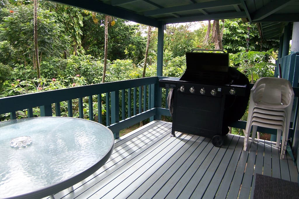 Rear lanai with large gas  barbecue and dining table