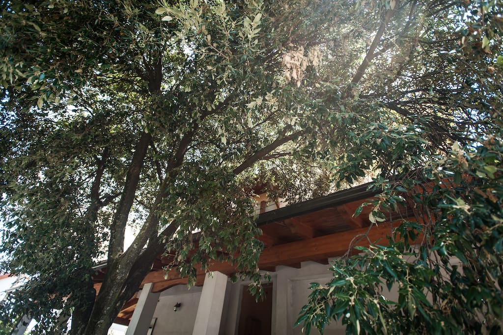 B & B: Suggestions from the Nuraghi