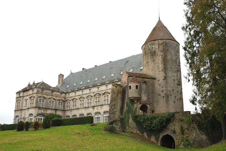 B&B Le Chateau de Frasne - Castle