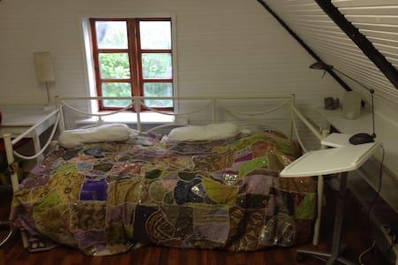 Lyst værelse tæt på strand og skov - Vig - Bed & Breakfast