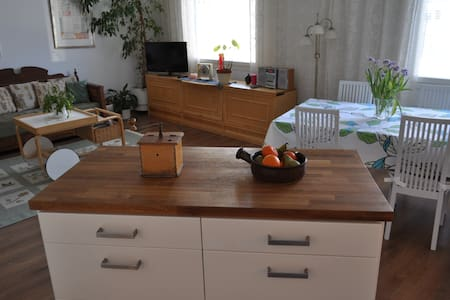 Apartment 2 bedrooms at  Lake Saimaa&near centrum. - Lappeenranta - Apartamento
