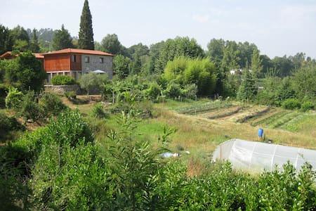 Quinta de Casalermo - Agro-turismo - Guimarães - Villa