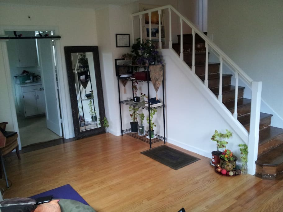 Living Room / Therapy Space / Yoga Studio