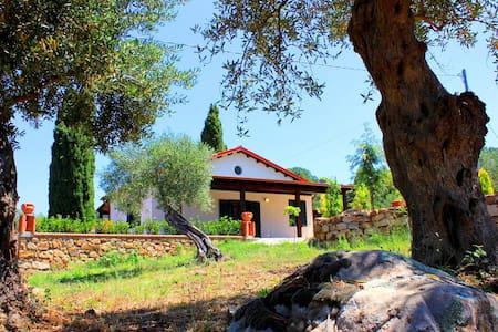 Villa dei Pavoni - Villa