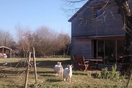 ** Maison de campagne au calme ** - Montigné-lès-Rairies - Casa