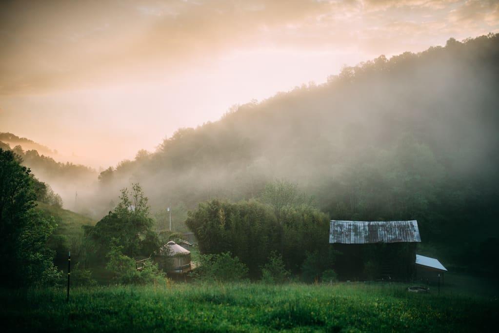 Hazy morning on the farm (credit: Karmathartic Studios, Jacksonville, FL)