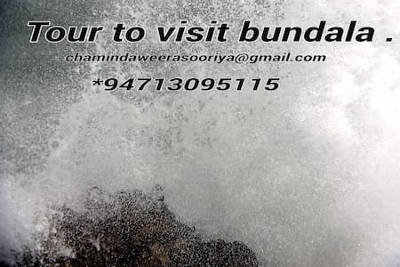 Visit to bundala - Hambantota - Bed & Breakfast
