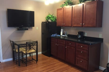 One bedroom efficiency near UF - Gainesville - Lakás