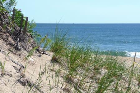 Plum Island Gem!  Private Coastal Home - Condominium