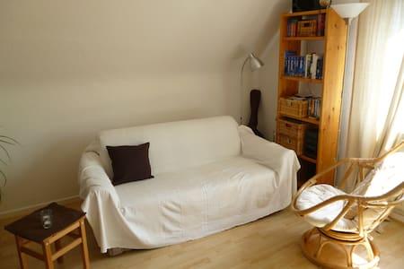 Schlaf-Wohnzimmer unterm Dach - Apartment