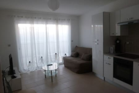 Brand New Flat Cannes