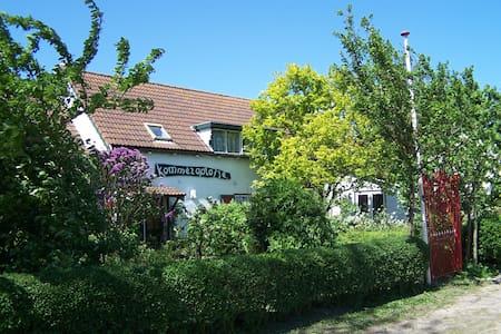 Luxe vakantiewoning in Zeeland, dichtbij strand - Talo