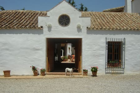 Finca la Guzmana B&B - Bed & Breakfast