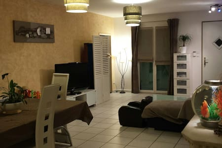 Villa familiale 20 min de lyon - La Boisse - Villa