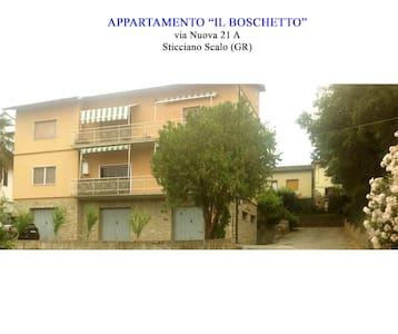 Appartamento il Boschetto. - Sticciano Scalo - Apartmen