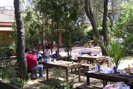 Villa-Rustico in pineta vista Etna arredato - Villa