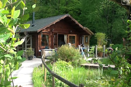 Cosy Log Cabin near Carmarthen - Cabin
