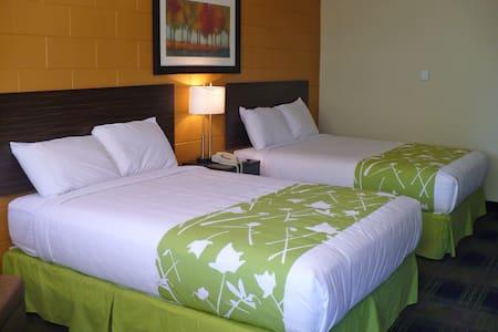 Guest Room, 2 Queen - Egyéb