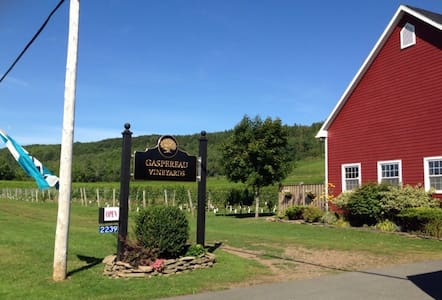 Vineyard View! - Wolfville - Appartement
