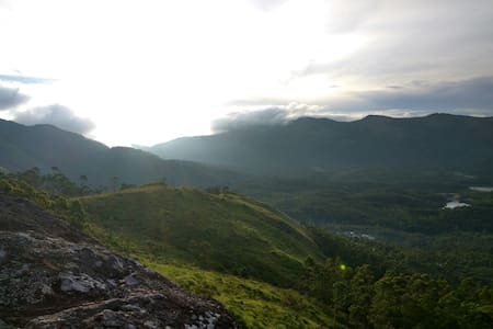 Mounrain trees - Chinnakanal - Sátor