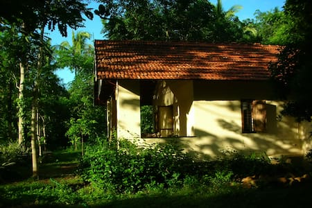 Homestay - Cottage on a farm - House