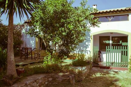 Casa do Quintal - Alvito - House