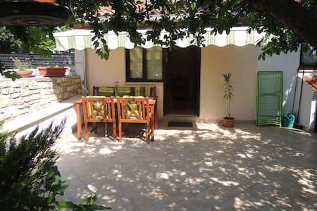 Nice garden Studio Chiara - Rovinj - Apartment