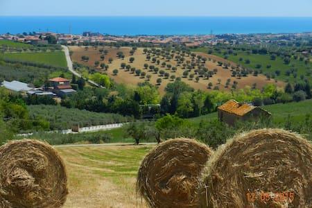 Charme Country House - Giulianova - Villa