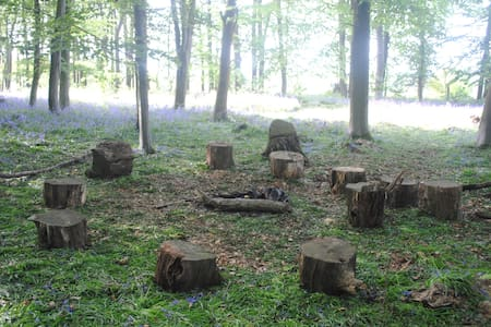 Country Farm for Camping (woods) - Selham - Inny
