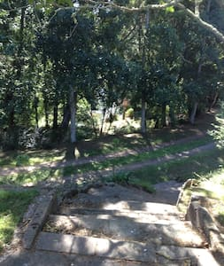 Creekside Haven - Te Poi