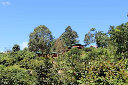 Peng's Tea Garden - Penzion (B&B)