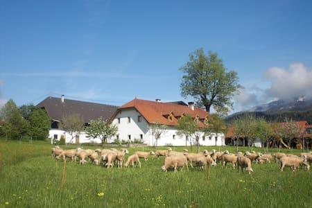 Farmholidays WALBAUER - Pichl
