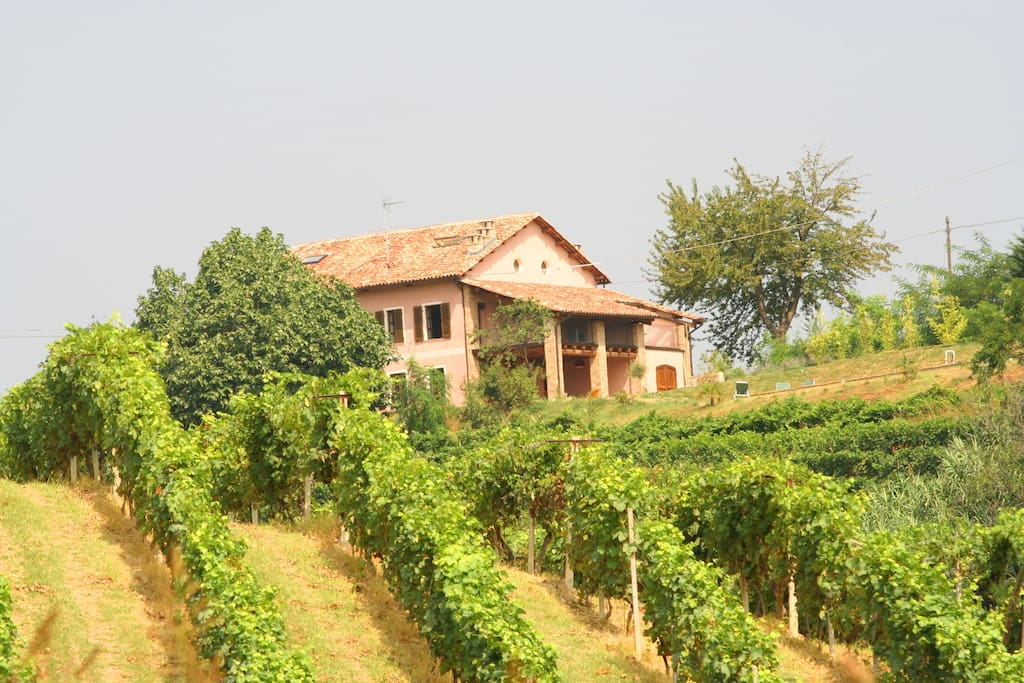 The house as seen from the vineyards