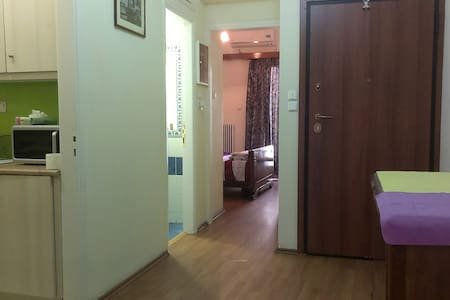 cozy apartment near the center - Athina - Apartment