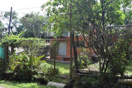 Hummingbird House - Monteverde - Ház