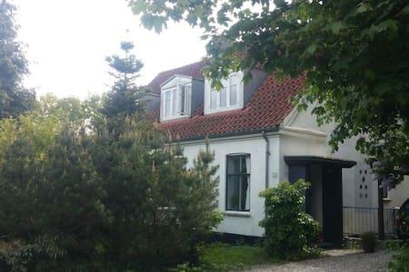 Beautiful house in huge garden - House