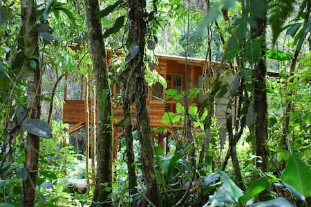 House in the amazon/ Rafting tour - Huis