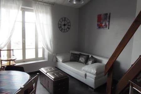 Meublé en Provence, Mont Ventoux - Apartment