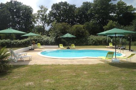 Spacious Gite with swimming pool - Saint-Julien-le-Vendômois - Diğer