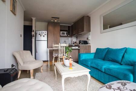 Santiago: Céntrico y Acogedor - Santiago - Appartamento