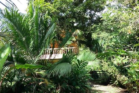 Balcon Flor, Bocas del Toro Island - Bed & Breakfast