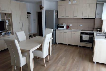 New&modern Salomia Apartment-near Shopping Center. - Șelimbăr